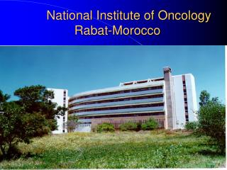 National Institute of Oncology Rabat-Morocco