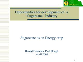 "Opportunities for development of  a ""Sugarcane"" Industry"