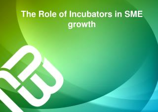 The Role of Incubators in SME growth
