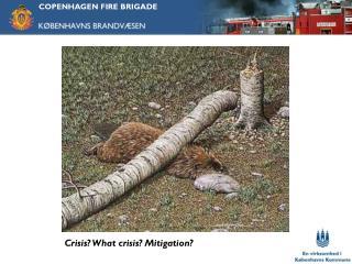 Crisis? What crisis? Mitigation?