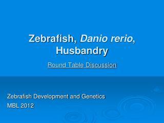 Zebrafish ,  Danio rerio , Husbandry