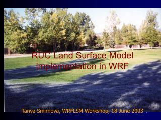 RUC Land Surface Model implementation in WRF Tanya Smirnova, WRFLSM Workshop, 18 June 2003