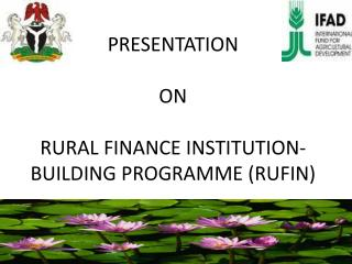 PRESENTATION ON  RURAL FINANCE INSTITUTION- BUILDING PROGRAMME (RUFIN)