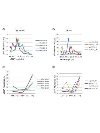 sRNA Abundance (%)