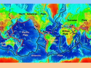 Pacific   Plate