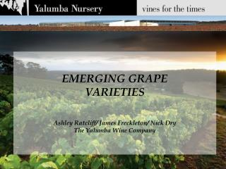 EMERGING GRAPE  VARIETIES Ashley Ratcliff/ James Freckleton/ Nick Dry The Yalumba Wine Company