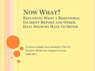 Now What? Exploring What a Behavioral Incident Report and Other Data Sources Have to Offer