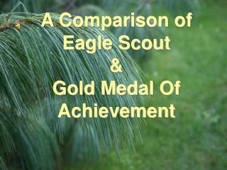 A Comparison of Eagle Scout  Gold Medal Of Achievement