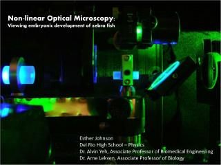 Non-linear Optical Microscopy: Viewing embryonic development of zebra fish