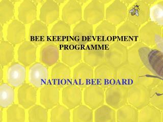 BEE KEEPING DEVELOPMENT PROGRAMME