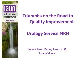 Triumphs on the Road to         Quality Improvement  Urology Service NRH