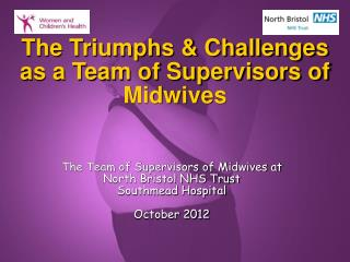 The Triumphs & Challenges as a Team of Supervisors of Midwives