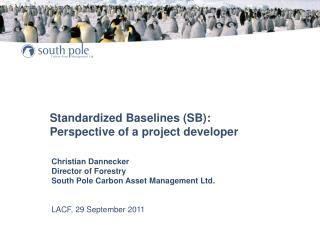 Standardized Baselines (SB): Perspective of a project developer