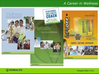 Wellness  Analys broschyr SKU #6767-SW-00