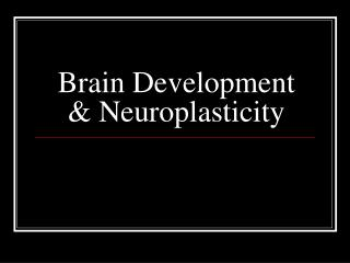 Brain Development & Neuroplasticity