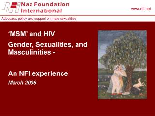'MSM' and HIV Gender, Sexualities, and Masculinities - An NFI experience March 2006