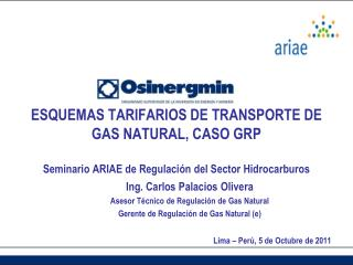 Ing. Carlos Palacios Olivera Asesor T�cnico de Regulaci�n de Gas Natural