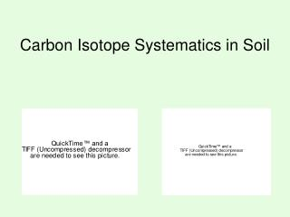 Carbon Isotope Systematics in Soil