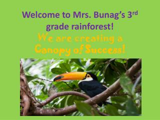 Welcome to Mrs. Bunag s 3rd grade rainforest We are creating a  Canopy of Success