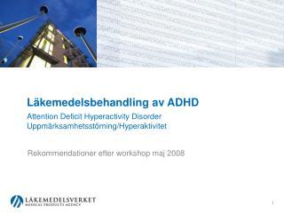 Rekommendationer efter workshop maj 2008