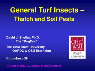 General Turf Insects     Thatch and Soil Pests