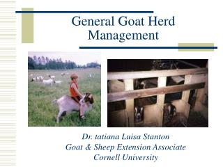 General Goat Herd Management