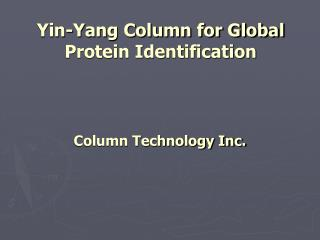 Yin-Yang Column for Global Protein Identification