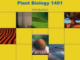 Plant Biology 1401