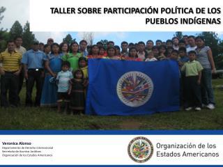 TALLER SOBRE PARTICIPACI Ó N POLÍTICA DE LOS  PUEBLOS INDÍGENAS