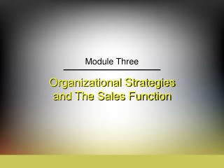 Organizational Strategies and The Sales Function