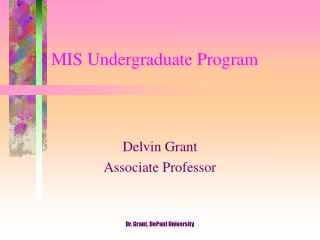MIS Undergraduate Program