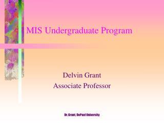 MIS Undergraduate Program