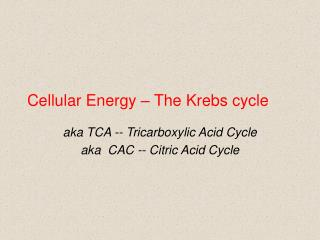 Cellular Energy � The Krebs cycle