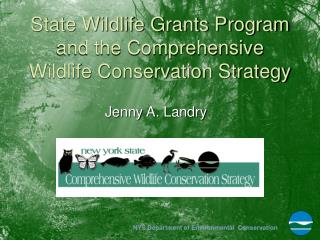 State Wildlife Grants Program and the Comprehensive Wildlife Conservation Strategy