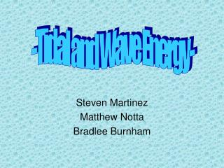 Steven Martinez Matthew Notta Bradlee Burnham