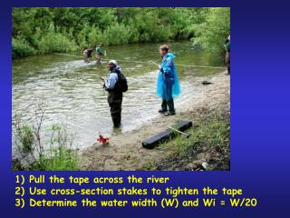 Pull the tape across the river Use cross-section stakes to tighten the tape