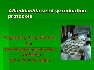 Allanblackia  seed germination protocols