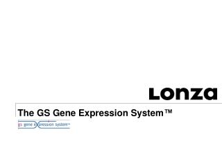 The GS Gene Expression System