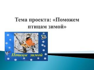 Тема проекта: «Поможем птицам зимой»