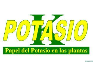 Papel del Potasio en las plantas