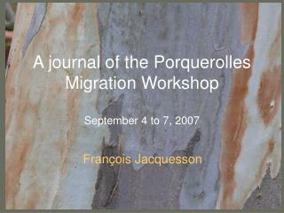 A journal of the Porquerolles Migration Workshop September 4 to 7, 2007