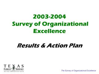 2003-2004  Survey of Organizational Excellence Results & Action Plan