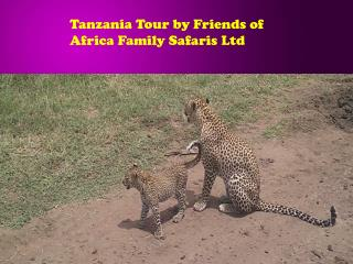 Tanzania Tour by Friends of Africa Family Safaris Ltd