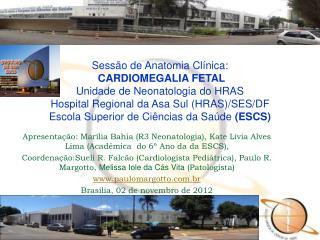 Sessão de Anatomia Clínica:  CARDIOMEGALIA FETAL