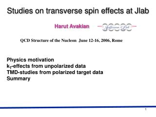 Studies on transverse spin effects at Jlab