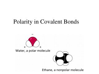 Polarity in Covalent Bonds
