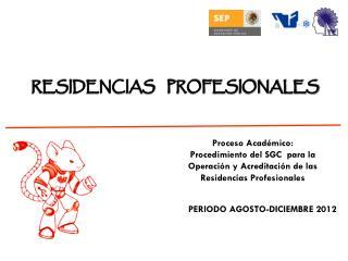 RESIDENCIAS    PROFESIONALES