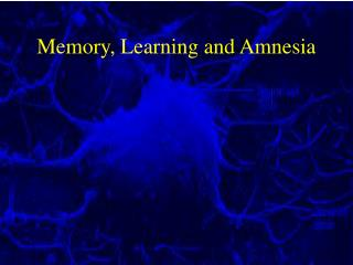 Memory, Learning and Amnesia