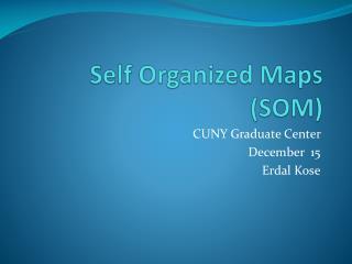 Self Organized Maps (SOM)