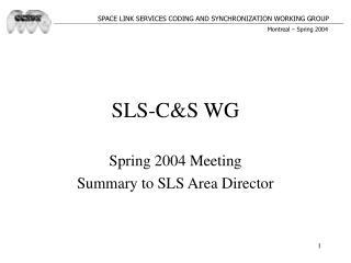 SLS-C&S WG